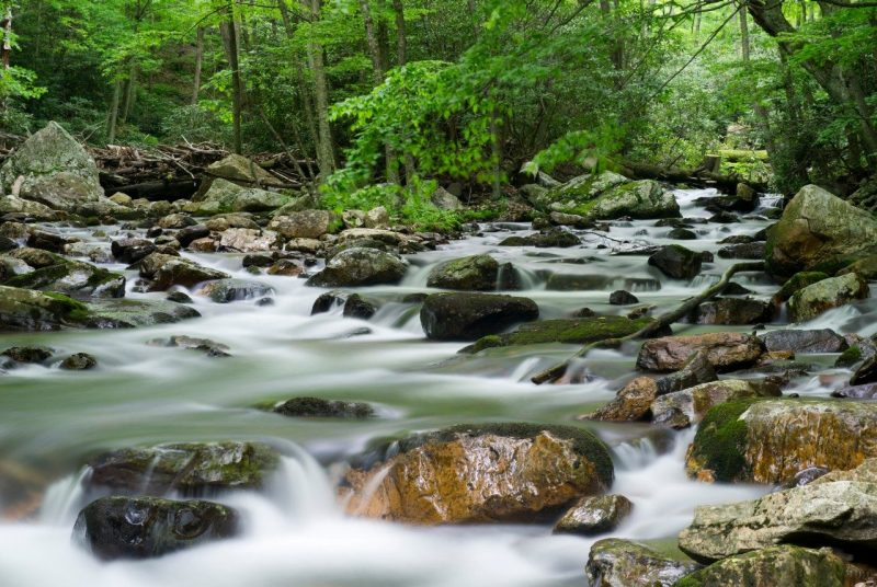 What Can Stream Quality Tell Us About Quality of Life? Researchers Find Relationship Between Ecosystem Health and Human Well-being